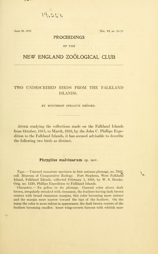 Two Undescribed Birds from the Falkland Islands