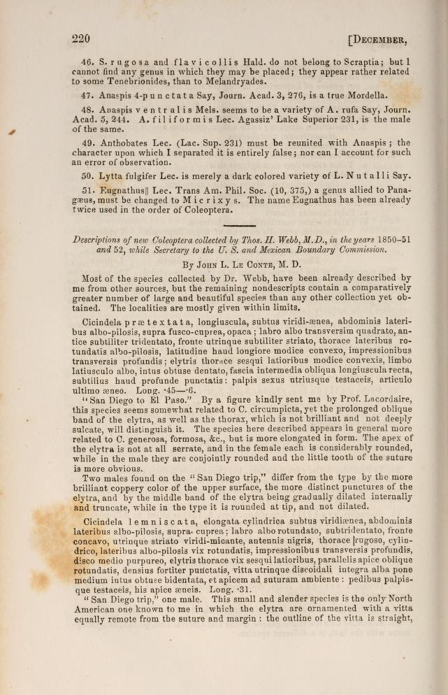 LeConte (1854) Proc. Acad. Nat. Sci. Phil. 7: 220-225
